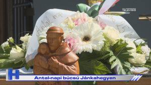 Híradó: Antal-napi búcsú Jánkahegyen
