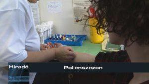 Híradó: Pollenszezon