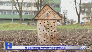 Segítség rovarhotelekkel