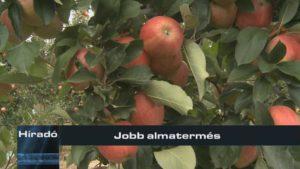 Jobb almatermés