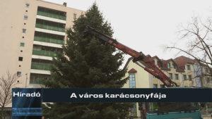 A város karácsonyfája