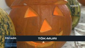 TÖK-MURI