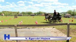 V. Egervári Hajsza