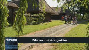 Múzeumi látogatás
